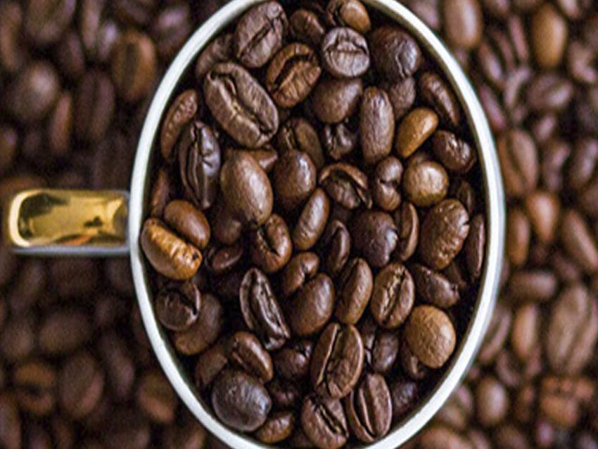 que-es-el-cafe-ecologico