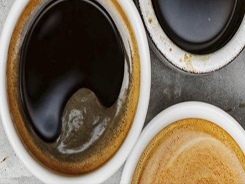 NUESTROS CAFÉS ECOLÓGICOS
